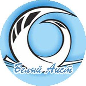 """Благотворительный фонд помощи детям """"Белый Аист"""""""