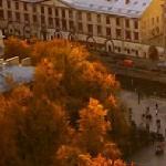 Броская осень