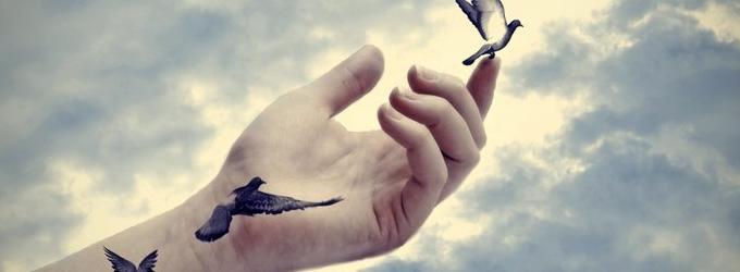 Птицей стать