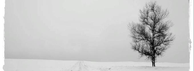 Опять зиму встречать одному
