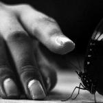 у меня под кожей бабочки и пираньи