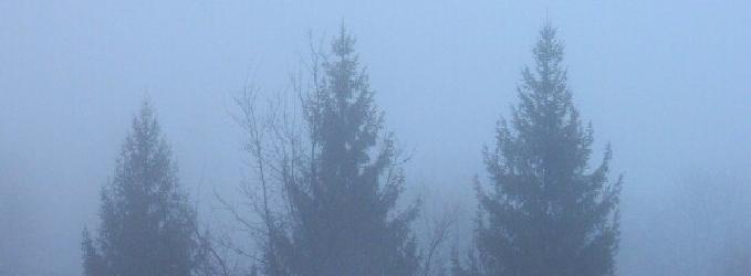 Туман воспоминаний - жизнь,любовнаялирика,любовь,лирика