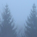Туман воспоминаний