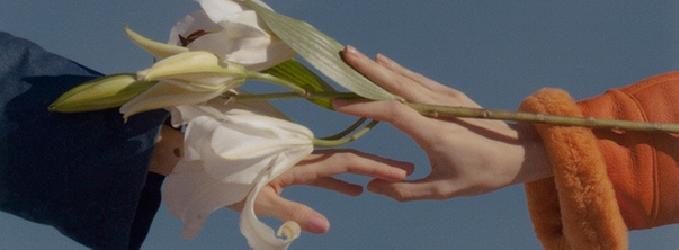 Мне лилию в руки вложили.