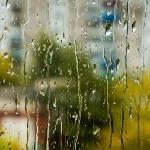 Капельки дождя на промокшем стекле.