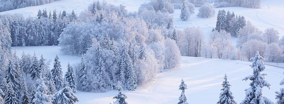 Поёт зима аукает - зима, есенин