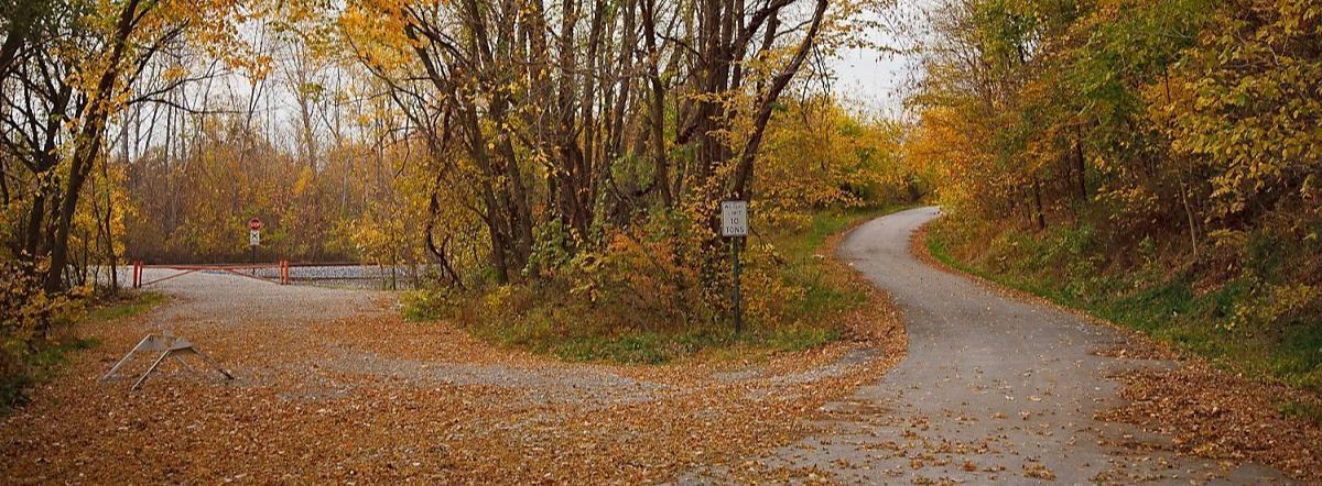The Road Not Taken - roads