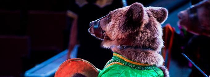 Всероссийский цирк