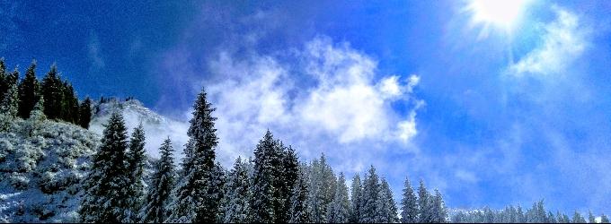 На  парашютиках снежинок