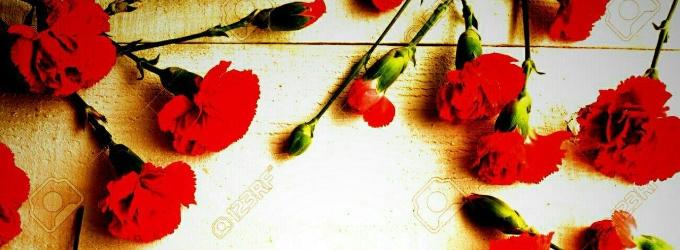 Гвоздики алые - смерть, кровь, цветы