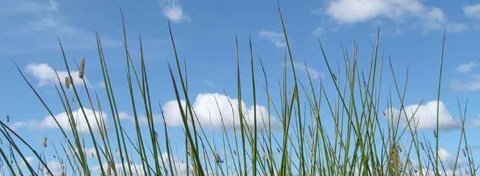 Как здорово смотреть на облака