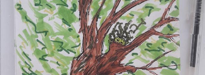 Та, что в дереве живёт