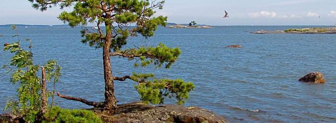 На Финском заливе - пейзажнаялирика