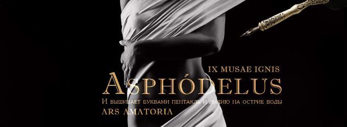 Asphodelus