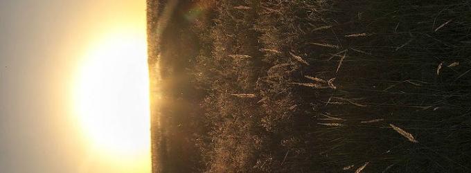 Садится солнце