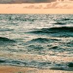 Пловец (Воют волны, скачут волны)
