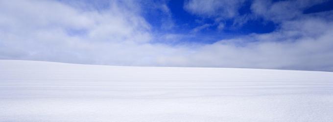 Поле снежное.