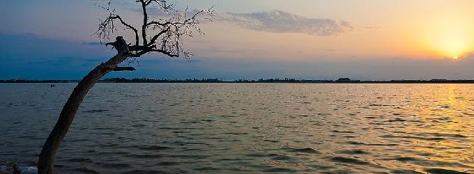 Синий закат лета