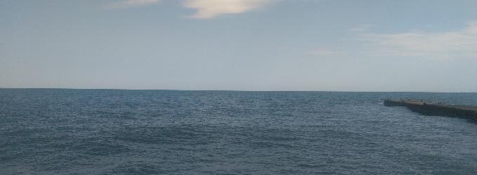 ЯНКО. 2. Тематика - МОРЕ, МОРЕ...  3) Жизнь в воде