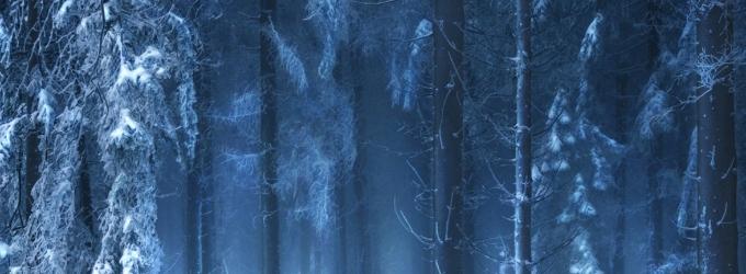 Зима - подвижница седая - зимаюродствозабытье
