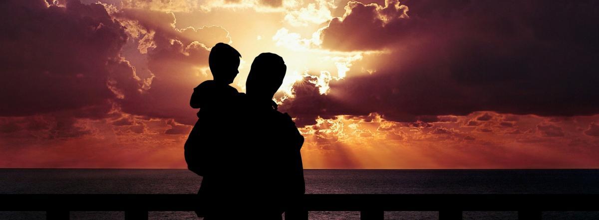 Домби и сын краткое содержание
