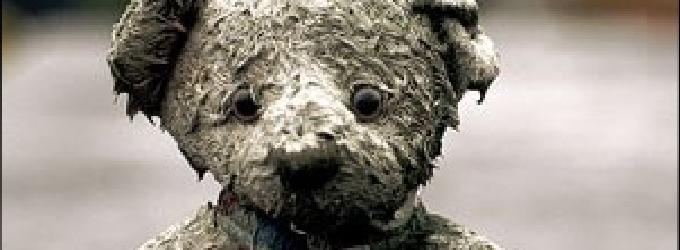 медведь на память