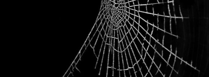 Изуродованный разум - разум, сеть, паук, лирика, боль