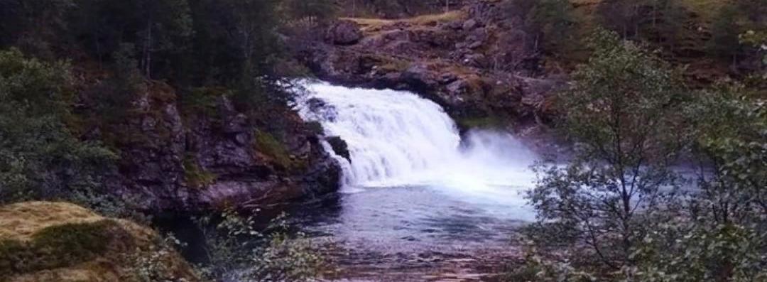 В тихой Норвегии...