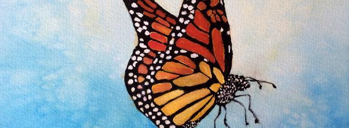 Человек - бабочка