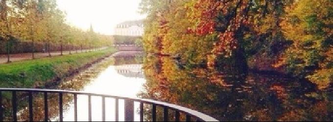 Багрянится спелая осень