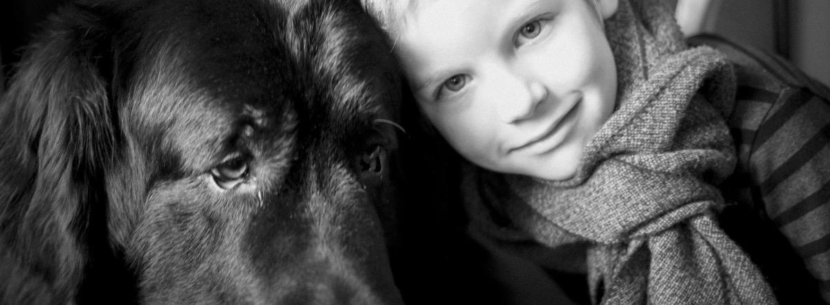 Мальчик и его собаки - собаки, о любви, о жизни, поэзия, лирика