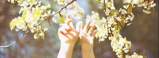 Долгожданный май - надежда, о любви, природа, май, весна