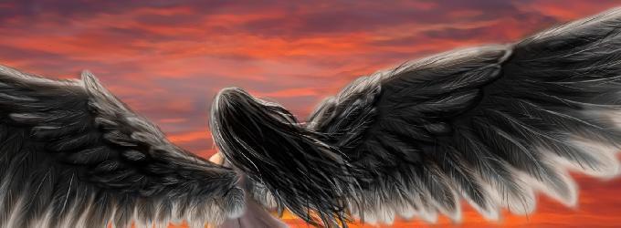 Птица Альбатрос