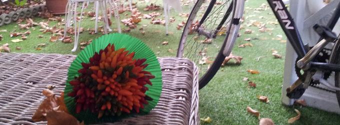 Чемоданное. Осеннее. Светлогрустное