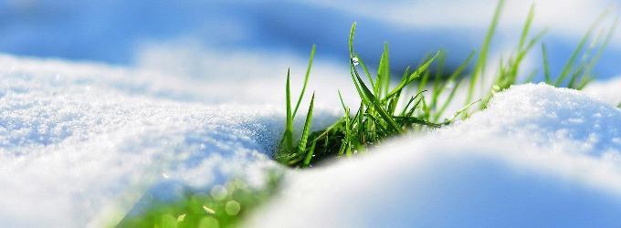 Завтра весна