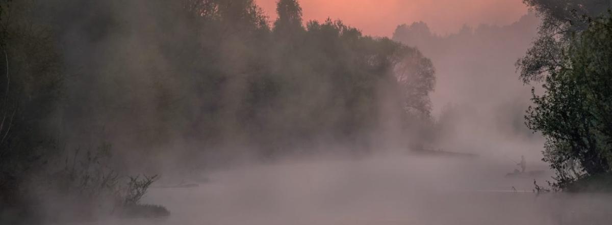 Fog. The fog comes - fog