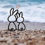 Ты моё море