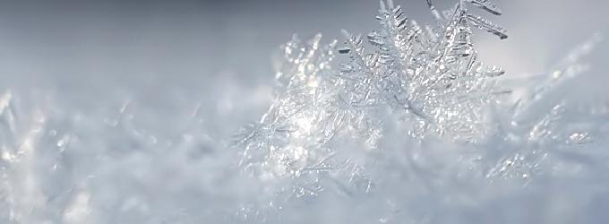 Снег - природа,Женщина,снег,любовь,лес