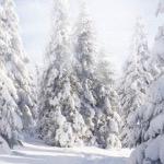 Что-то стосковалось по зиме...)))