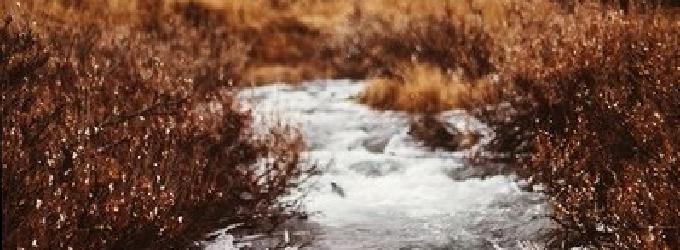 А жизнь-река еще один урок