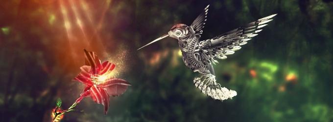 Колибри - светлячок - фиалка