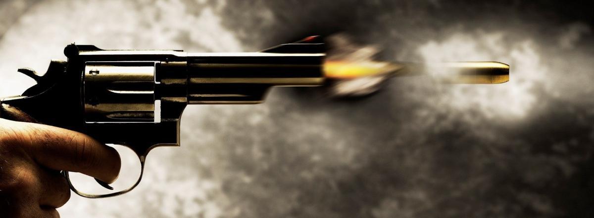 Выстрел - краткое содержание