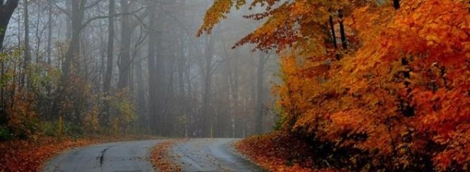 В осень