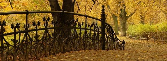 Шумели листья под ногами