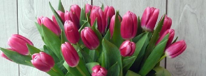 С праздником 8 марта!