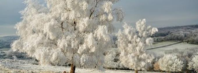 Я не люблю зимові дні Але - пейзажнаялирика