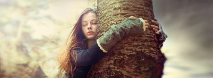 Дерево - лирика,жизньдоипосле