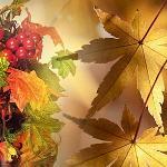 Дама Осень