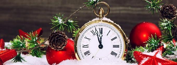Поедем в Новый год!