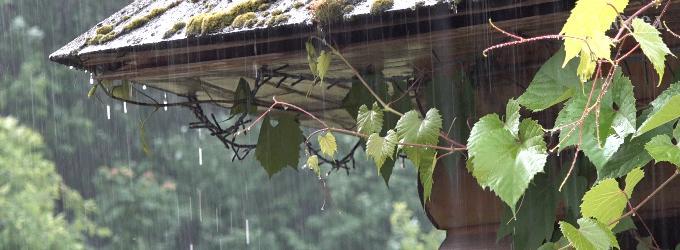 Дожди и время